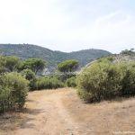 Foto Camino de Acceso a Lancha del Yelmo 15