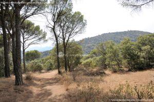 Foto Camino de Acceso a Lancha del Yelmo 17