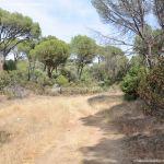 Foto Camino de Acceso a Lancha del Yelmo 19