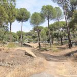 Foto Camino de Acceso a Lancha del Yelmo 31