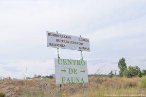 Foto Centro de Fauna Salvaje 1