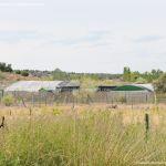 Foto Centro de Fauna Salvaje 3