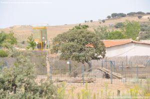 Foto Centro de Fauna Salvaje 6