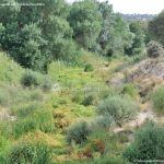 Foto Río Perales en Villamantilla 1