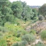 Foto Río Perales en Villamantilla 2
