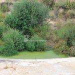 Foto Río Perales en Villamantilla 3