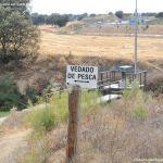 Foto Río Perales en Villamantilla 4