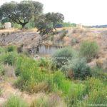 Foto Río Perales en Villamantilla 9