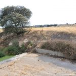 Foto Río Perales en Villamantilla 17