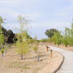 Foto Itinerario ecológico por el Suroeste Madrileño 10