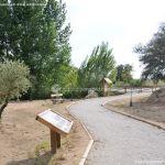 Foto Itinerario ecológico por el Suroeste Madrileño 13