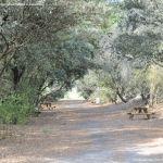 Foto Itinerario ecológico por el Suroeste Madrileño 15