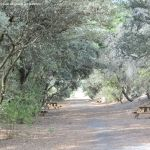 Foto Itinerario ecológico por el Suroeste Madrileño 18