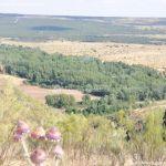 Foto Cerro de la Oliva 7