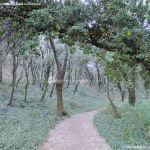 Foto Bosques de Valgallego 1