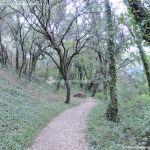 Foto Bosques de Valgallego 2