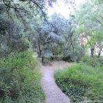 Foto Bosques de Valgallego 3
