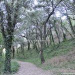Foto Bosques de Valgallego 4