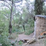 Foto Bosques de Valgallego 7