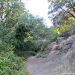 Foto Bosques de Valgallego 12