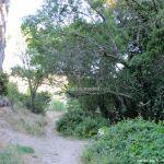 Foto Bosques de Valgallego 13