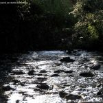 Foto Río Jarama en Talamanca de Jarama 7