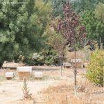 Foto Área de Recreo junto al Río Jarama 2