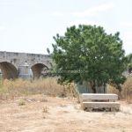 Foto Área de Recreo junto al Río Jarama 4