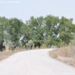Foto Vía Pecuaria junto al Puente Largo 9