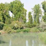 Foto Pasarela sobre el río Tajo 2