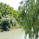 Foto Pasarela sobre el río Tajo 3