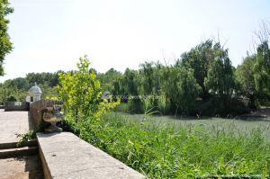 Foto Embarcadero Real de Aranjuez 15