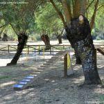 Foto Circuito canino en Arroyo de la Fresneda 8