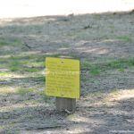 Foto Circuito canino en Arroyo de la Fresneda 9