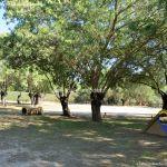 Foto Circuito canino en Arroyo de la Fresneda 13