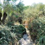 Foto Arroyo de la Fresneda 2