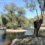 Foto Laguna del Arroyo de la Fresneda 11
