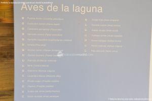 Foto Laguna del Arroyo de la Fresneda 13