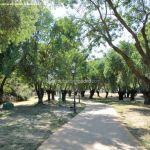 Foto Circuito Biosaludable en el Monte de Boadilla 7