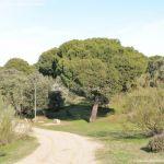 Foto Rutas en el Monte del Pilar 5