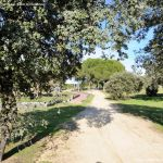 Foto Rutas en el Monte del Pilar 9