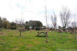 Foto Área Recreativa de Madarcos 3
