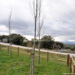 Foto Área Recreativa de Madarcos 7