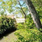 Foto Puente Río Tajuña 5