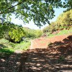 Foto Ruta Camino de San Galindo 4