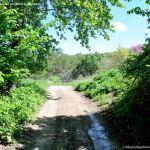 Foto Ruta Camino de San Galindo 6
