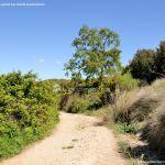 Foto Ruta Camino de San Galindo 12