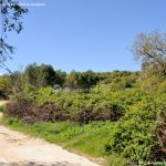 Foto Ruta Camino de San Galindo 13
