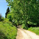 Foto Ruta Camino de San Galindo 15