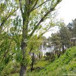 Foto Área Recreativa El Pinar y Parque Juan Pablo II 3